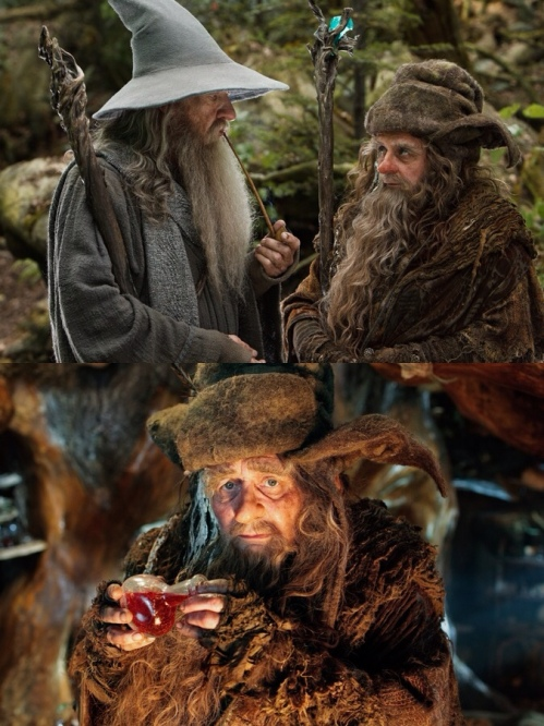 Gandalf e Radagast
