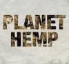 Box Planet Hemp - Planet Hemp